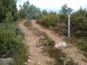 Señalización - Mateba - Rodeche - Enduroland