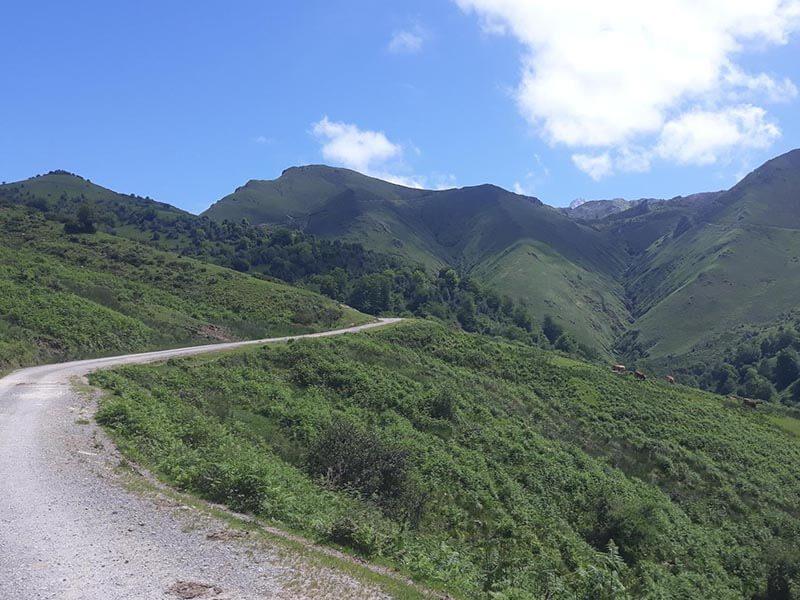 Pista Ruta BTT Lagos de Covadonga