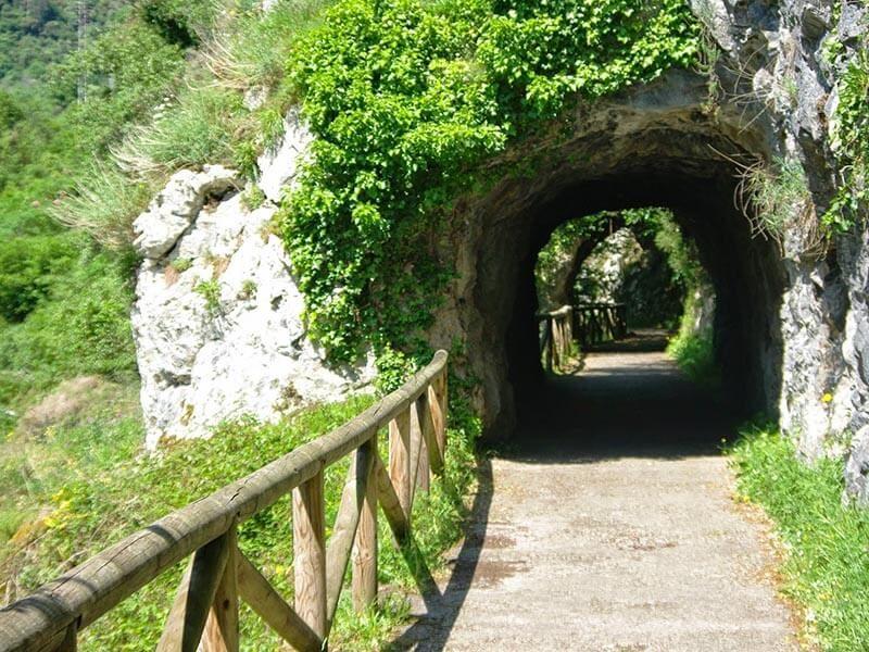 Senda del oso zona de túneles
