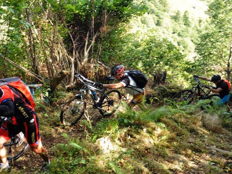Subidón en el Anillo Ciclista