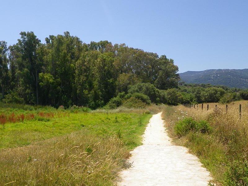 TransAndalus Camino