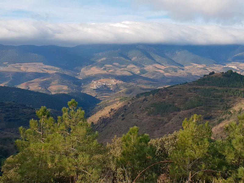 Vistas de Santa Cruz del Río Grío y el pico del Rayo