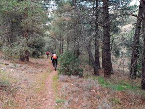 Sierra de Algairen - Senda del río Alpartir