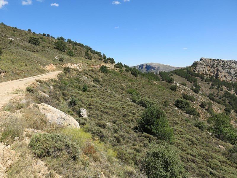 Ruta BTT Moncayo - Subida Cerro Gordo