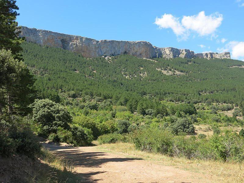 Ruta BTT Moncayo - Vistas Cerro Gordo
