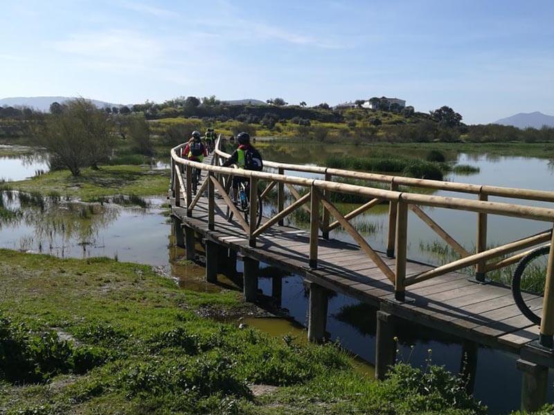 Laguna Fuente de Piedra Ruta en bici con niños