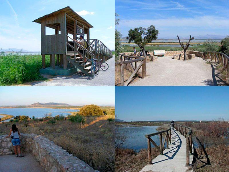 Laguna Fuente de Piedra Vistas y Observatorios