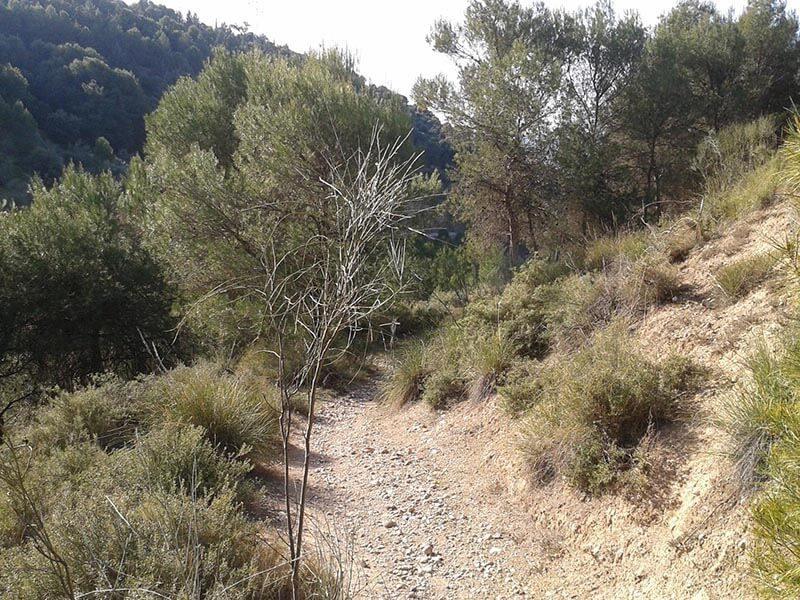 Barranco del Sacromonte