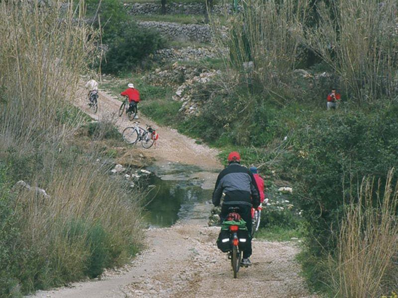 Camino de Jalón