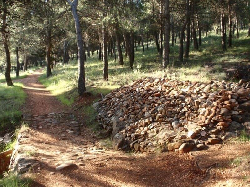 Fuente Mojarras