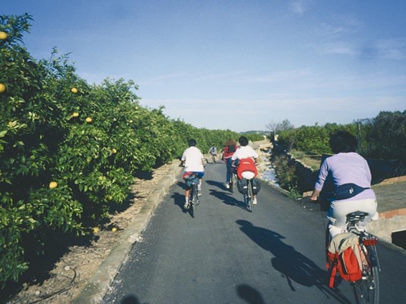 Pedaleando entre Naranjos