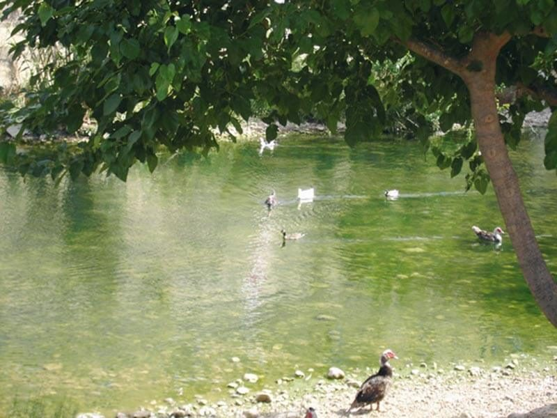 Río Girona