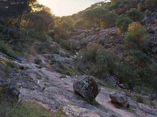 Sendero en la roca